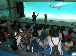 海の生きもの講座の写真